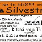 silvestr-2011-04