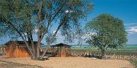 Ochutnávkový stánek na viniční trati Staré vinice, Havraníky